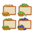 set of wooden banner and vegetable vector image vector image