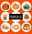 set ripe pumpkins food and jack-o-lantern vector image