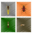 assembly flat shading style insect vector image vector image