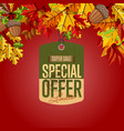 autumn sale label special offer