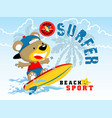 bear the surfer cartoon vector image
