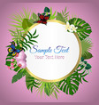 beautiful floral summer background with vector image vector image
