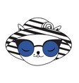 cute cat in fashionable summer hat and sunglasses vector image vector image