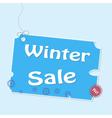 Discount winter labels vector image