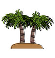 palm trees on island vector image vector image