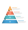 pyramid infographics vector image