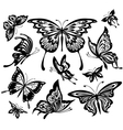 Set of black and white butterflies vector | Price: 1 Credit (USD $1)