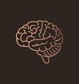 brain logo icon design vector image
