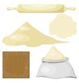 Dough Flour vector image