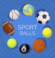 balls sport equipment for tennis volleyball vector image