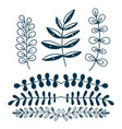decorative branches and leaves nature vector image