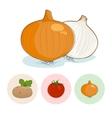Icons OnionTomatoes Potato vector image vector image