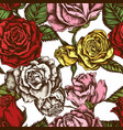 seamless pattern with hand drawn colored roses vector image vector image