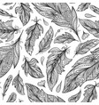 zentangle feather pattern vector image vector image