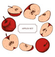 collection of hand drawn apples highly vector image vector image