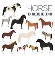 horse breeding icon set farm animal flat design vector image