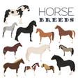 Horse breeding icon set farm animal flat design