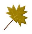 maple leaf symbol icon design vector image vector image