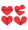 red heart with zipper symbol zipper heart vector image