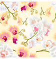seamless texture beautiful phalaenopsis orchids vector image vector image