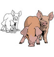 two piglets vector image