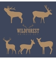 Various silhouettes of deer isolated on white vector image