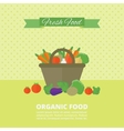Banner card with fresh fruits and vegetables vector image