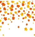 Falling autumn leaves background vector image vector image