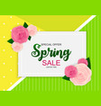 spring sale cute background with flowers vector image