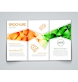 Tri-fold modern brochure design template with vector image vector image