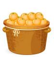 a basket of orange