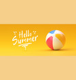 beach ball summer and vacations concept vector image vector image