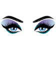 blue eyes make up vector image vector image