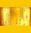 condensation water or beer droplets on glass vector image vector image