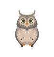cute owl lovely bird cartoon character front view vector image vector image