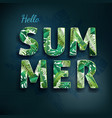 hello summer summertime the text poster against vector image vector image