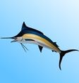 marlin vector image vector image