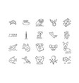 australia line icons signs set outline vector image vector image