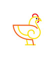 chicken linear flat style vector image vector image