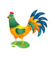 crowing rooster with beautiful tail on the field vector image vector image