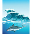 Dolphin swimming under the ocean vector image vector image