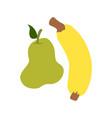 guava and banana accompanied by a flat vector image vector image