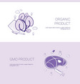 organic and gmo product concept template web vector image vector image