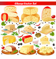 set of different types of cheese on a white vector image vector image