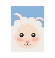 sheep head book cover design vector image vector image