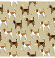seamless pattern with cute dog breed beagle vector image