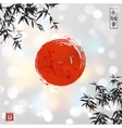 Bamboo leaves and red sun vector image vector image