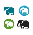 Elephant logo Animals icon or symbol vector image vector image