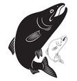 fish humpback vector image vector image