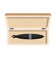 fountain pen in case pen stick in wooden box vector image